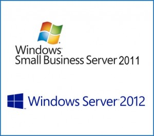 Windows Small Business Server 2011 or Windows Server 2012 Essentials?